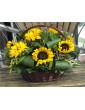 Grozs ar saulespuķēm