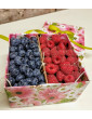 Raspberry and blueberry berry box