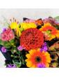 Bouquet of Autumn flowers...