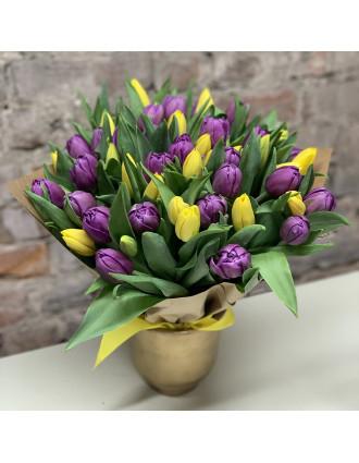 51 vai 101 dzeltena un violeta tulpe