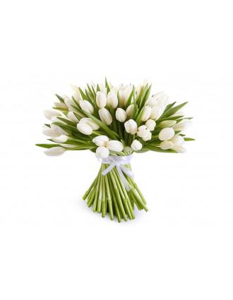 51 vai 101 balta tulpe