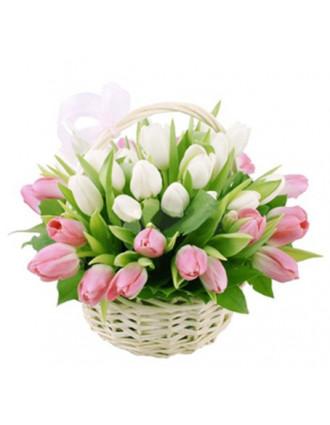 Rozā un baltu tulpju grozs