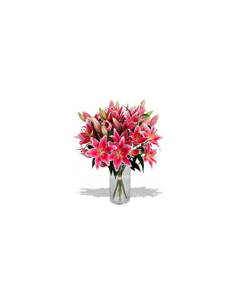 Rozā lilijas