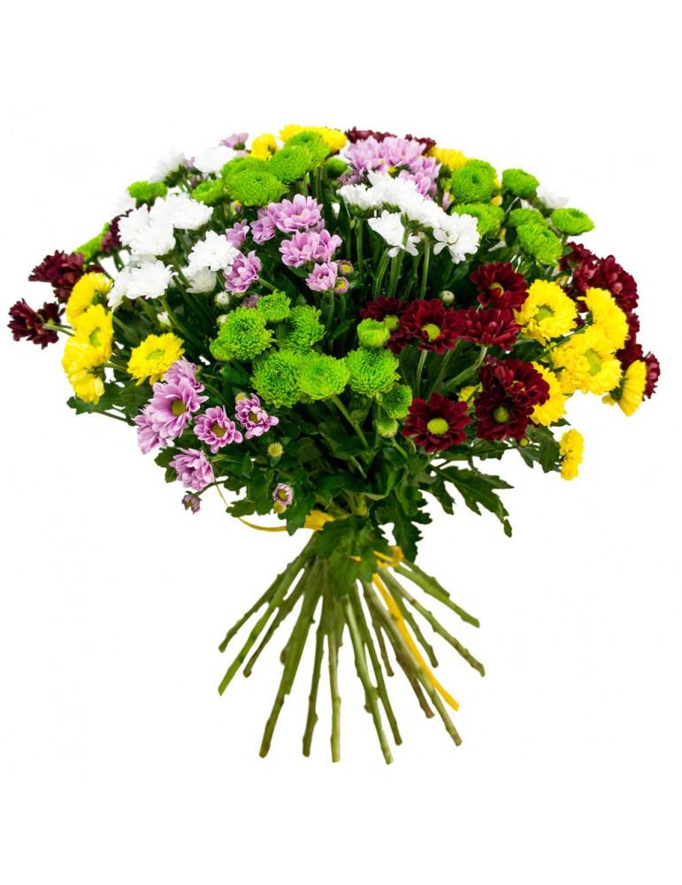 Bouquet of chrysanthemum 25 pcs mix