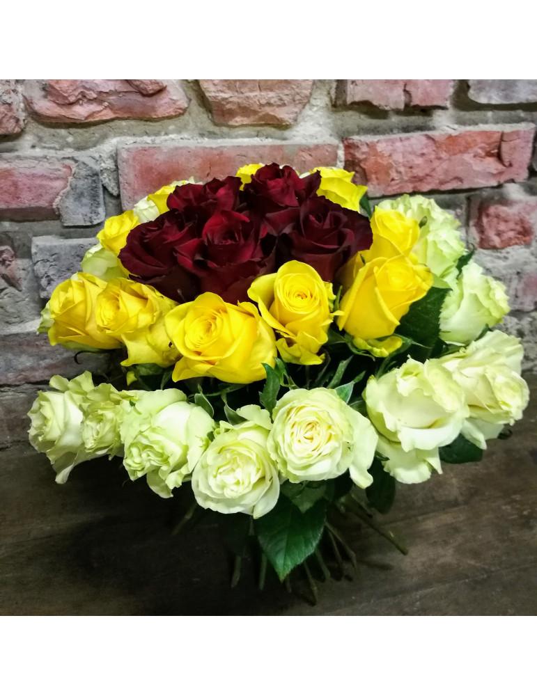 33 krāsainas rozes