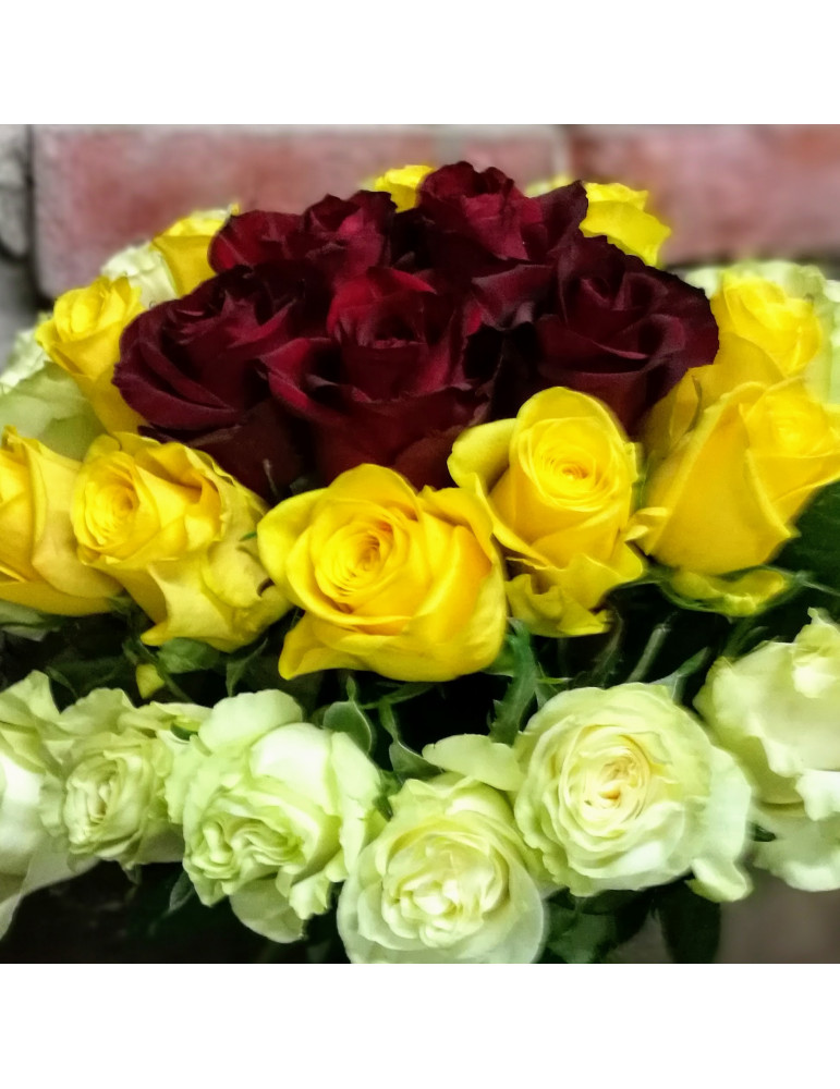 33 Multicolored Roses